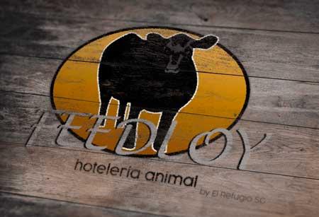 LogoFeedloy